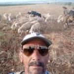 Belhadj Fehaima Profile Picture